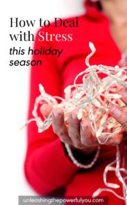 How to Deal With Stress -Holiday Season